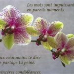 Condoléances ami proche