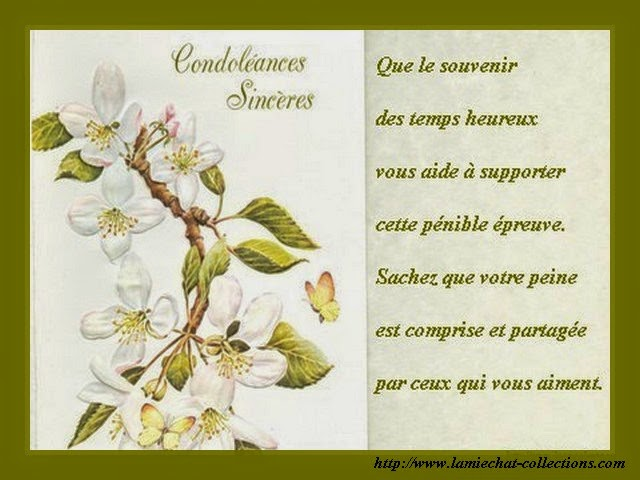 message condol u00e9ances ami