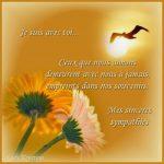 Message sincères condoléances