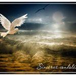 Texte de condoléances simple
