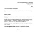 Lettre de démission cdi avec préavis et congés