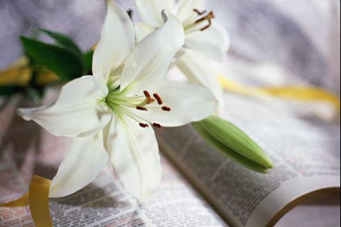 Rédiger des condoléances