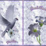 Carte de condoléances gratuite à imprimer