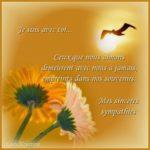 Texte sincères condoléances